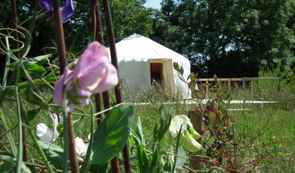 Swallow yurt in the summer