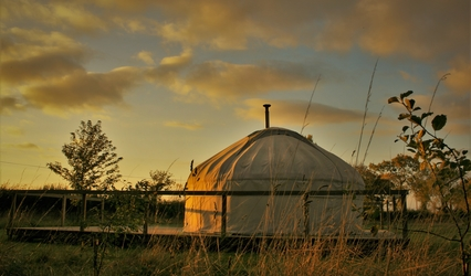 Barn Owl yurt caught by the rays of the setting sun