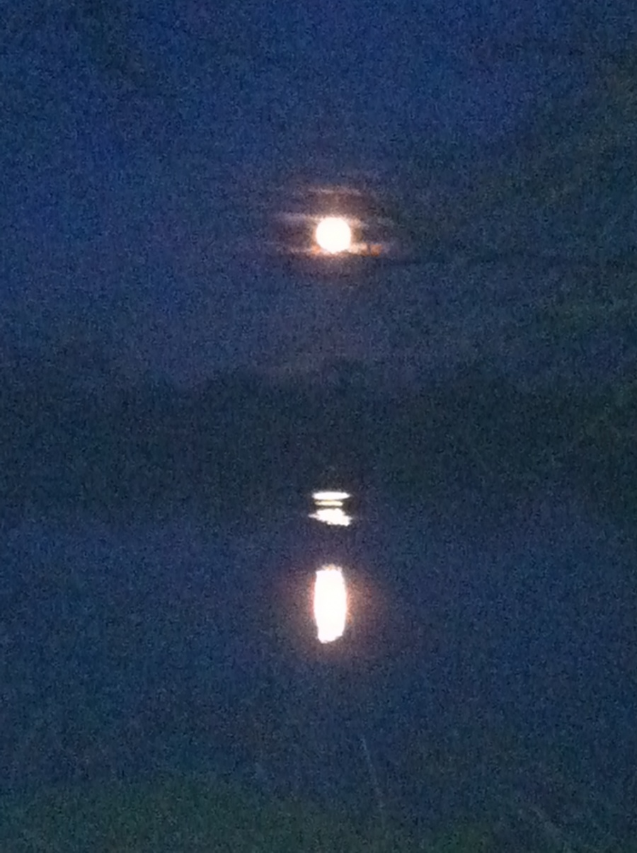 Moon rising over the Blyth estuary
