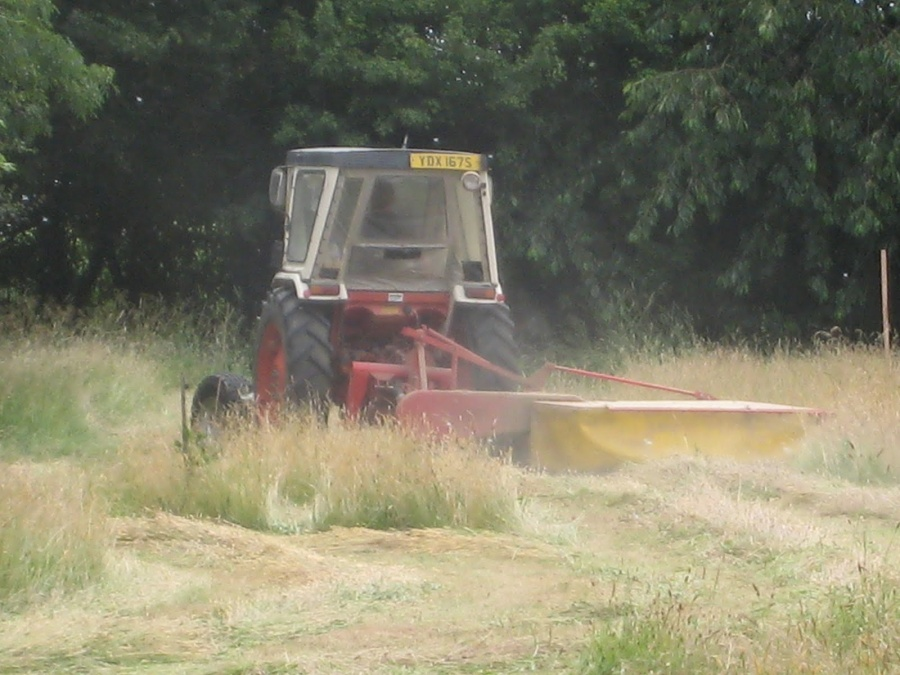 The grass in the field being cut